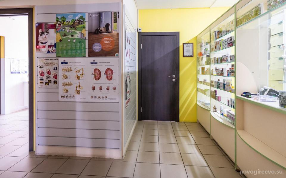 Ветеринарная клиника Благодел-Вет  в Новогиреево Изображение 6