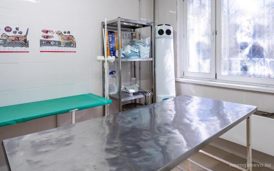 Ветеринарная клиника Благодел-Вет  в Новогиреево Изображение 12